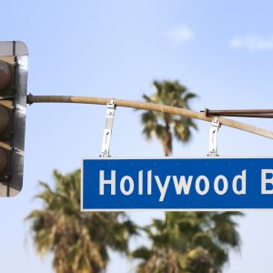 Hollywood Bl street sign with Palm Trees.